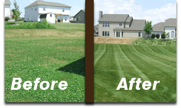 over-seeding-lafayette-lawn-care