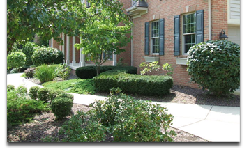 shrub-trimming-lawn-care-lafayette-indiana-green-care