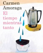 El tiempo mientras tanto - Carmen Amoraga portada