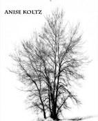 La terra calla - Anise Koltz portada