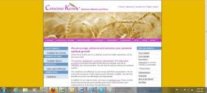 Conscious Kernels