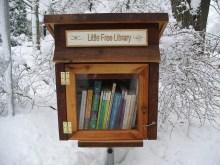 Micro-Libraries- Mailbox-style micro-libraries around the U.S.