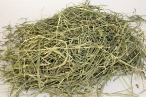 hay-samples