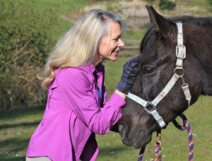 Equine Business Builder, Laura Kelland-May, horse business, horse podcast