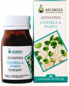 centella-asiatica-241x300