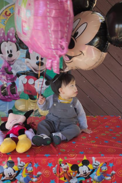 Sam and Stella 1st Bday - 2016-11-13T12:59:47 - 045