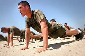 Recruits performing pushups as part of physica...