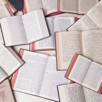 Porque a Bíblia tem tantas linguagens e traduções?