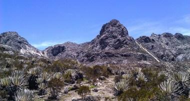 Pico Mucumpisito
