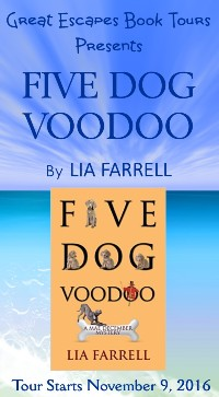 five-dog-voodoo-small-banner