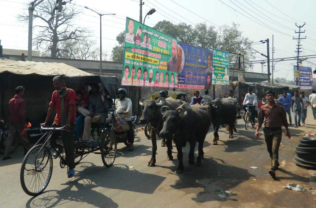 Decepções de viagem - Ruas de Agra (Índia)