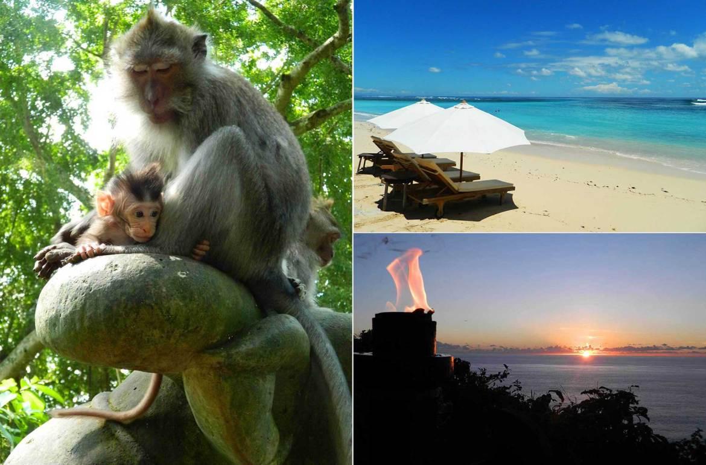 Guia de Viagem Ilha de Bali