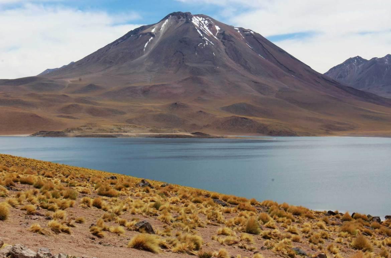 O que fazer no Atacama - Lagunas Altiplânicas