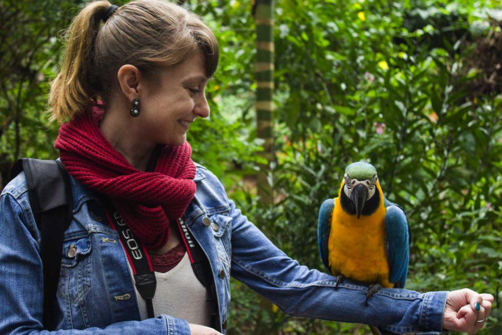 Dicas de Foz do Iguaçu - Parque das Aves