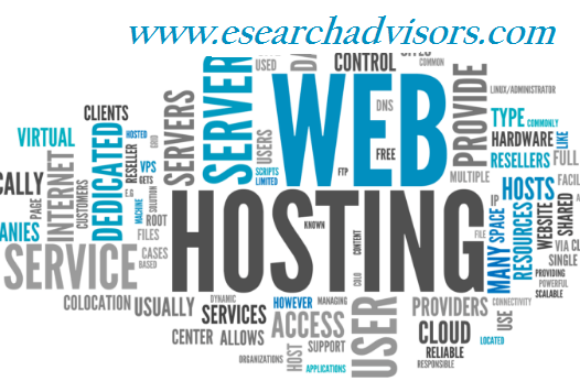 Website Hosting with Domain