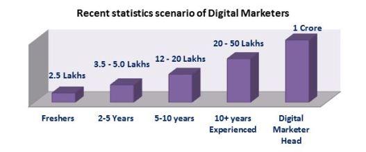 Digital Marketers Statistics