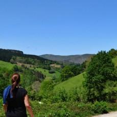 Ruta Cascadas de Lamiña