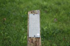 Panel de Haya en el arboreto de Mazcuerras