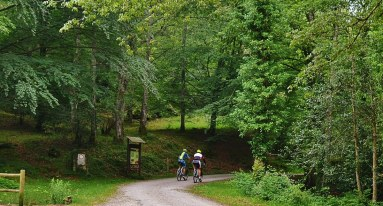Ciclistas en Ucieda