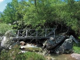 Puente de madera en Sejos
