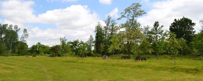 Parque El Bosque