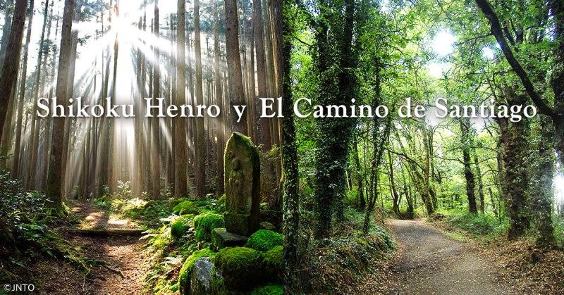 Ago2015_Henro_Top_es