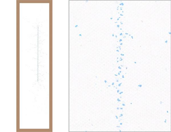 Elena Debiasio, Aggregazioni, 2013, pigmenti e resina su tela, cm 265x62.5 (a sinistra l'opera intera a destra un particolare)