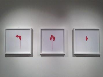 gagGiovanni Gaggia, Eva Gerd, Et curis; veduta della mostra, Rossmut, 2014, Roma