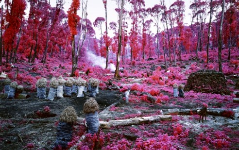 Richard Mosse Hunches in Bunches, 2011 Courtesy Collezione privata © Richard Mosse, Courtesy dellíartista e Jack Shainman Gallery, New York