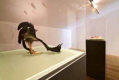 Birgit Jürgenssen, Kunst Meran/Merano Arte, foto Andreas Marini