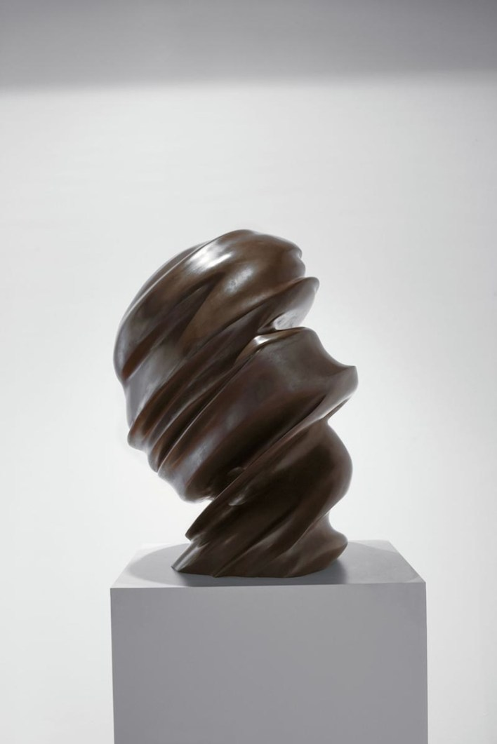 Tony Cragg, Untitled (Secret thoughts), 2002, bronzo patinato, 85x60x50 cm, BSI Art Collection, Svizzera