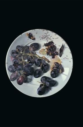 Wolfango, Il piatto dell'uva, 1970, acrilico su tela Courtesy Galleria Maurizio Nobile, Bologna