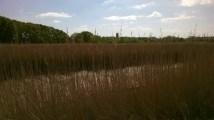Thorrington Tide Mill Essex (6)