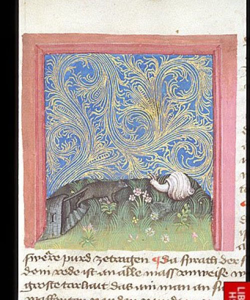 Egerton 1121 f. 10 Snail and mouse in conflict