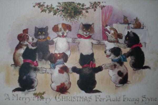 Inter Art Black Cats postcard