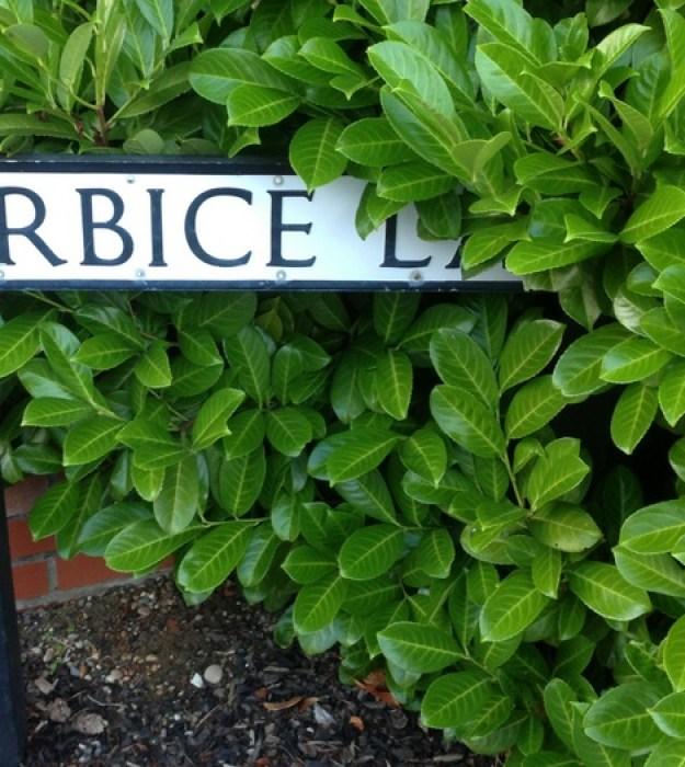 Berbice Lane, Great Dunmow