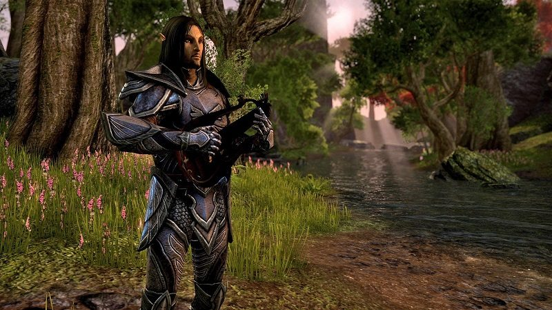 Elder_Scrolls_Online_6