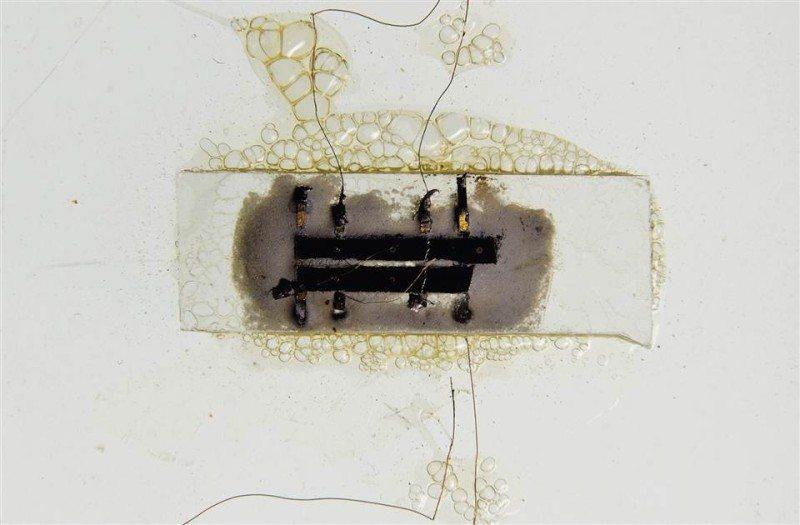 chip1_4ec57fc06dceabbd2437348b653e8658.nbcnews-ux-960-700