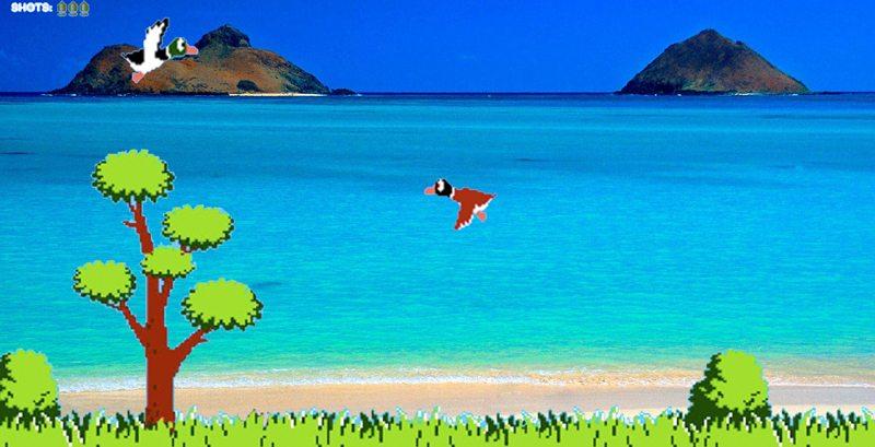 Hawaii-duckhunt
