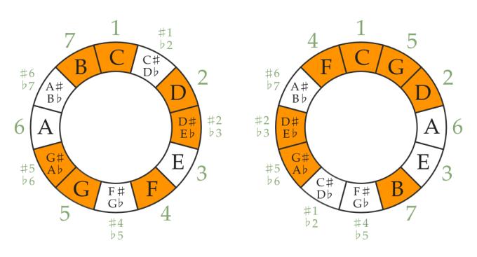 C harmonic minor scale