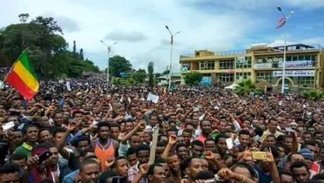 Amhara Resistance