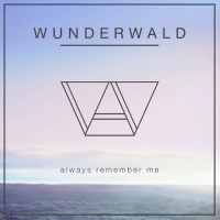 Wunderwald x Ry Cuming - Always Remember Me