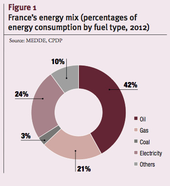 France's energy mix (percentages of energy consumption by fuel type, 2012)