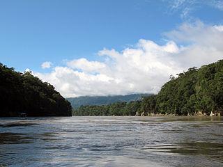 Quels sont les 5 plus longs fleuves du monde ?