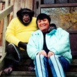 Sandy Herold with her (killer) chimpanzee, Travis.