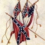 confederacy_south_carolina(2010-med-big)