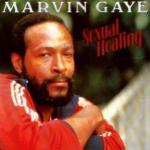 mavin gaye sexual healing