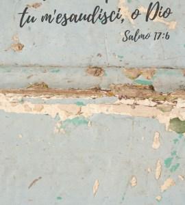 salmo17-6