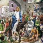 Comentario al evangelio de Juan 12, 12-16, domingo de ramos, oportunidad para que sea nuestro rey. Audio mp3