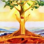 Evangelio San Lucas 13,18-21. Martes 25 de Octubre de 2016.